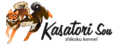 kasatorisou kennel